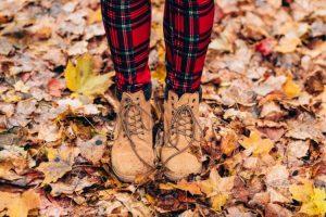 Aceites esenciales para el otoño
