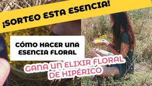 Cómo hacer una esencia floral + sorteo